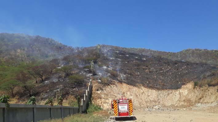 Momento en que los bomberos trabajaban controlando la conflagración