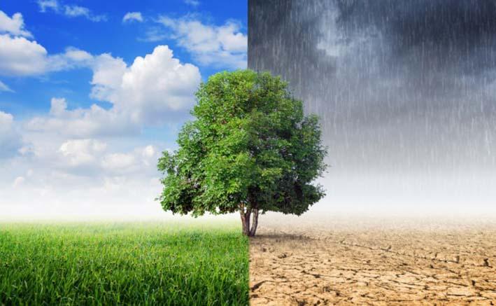 Implementan estrategias contra el cambio climático en Santa Marta