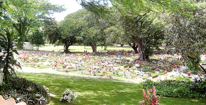 El informador santa marta colombia for Cementerio jardin del mar